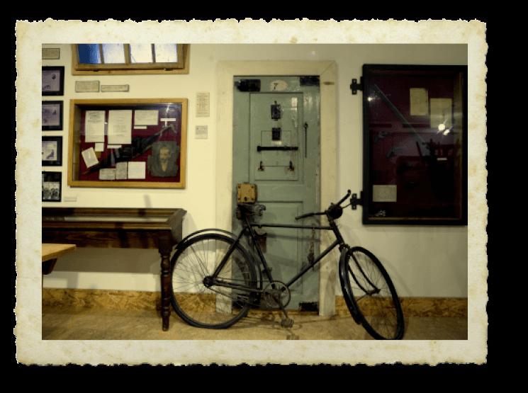 kneißl fahrrad